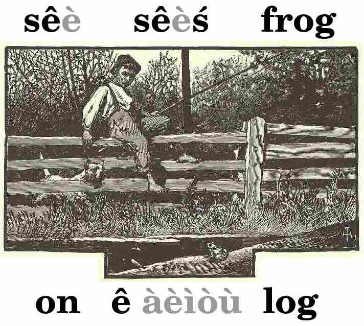 Boy sitting on fence, watching frog sitting on a rat